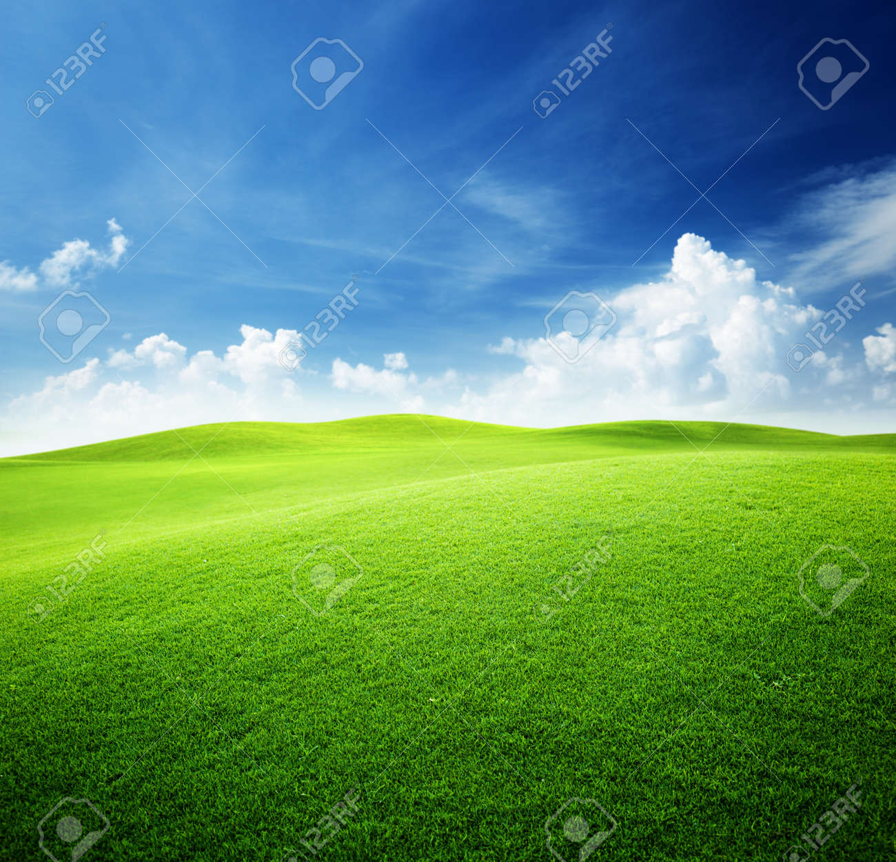 green field and blue sky Stock Photo - 8347202