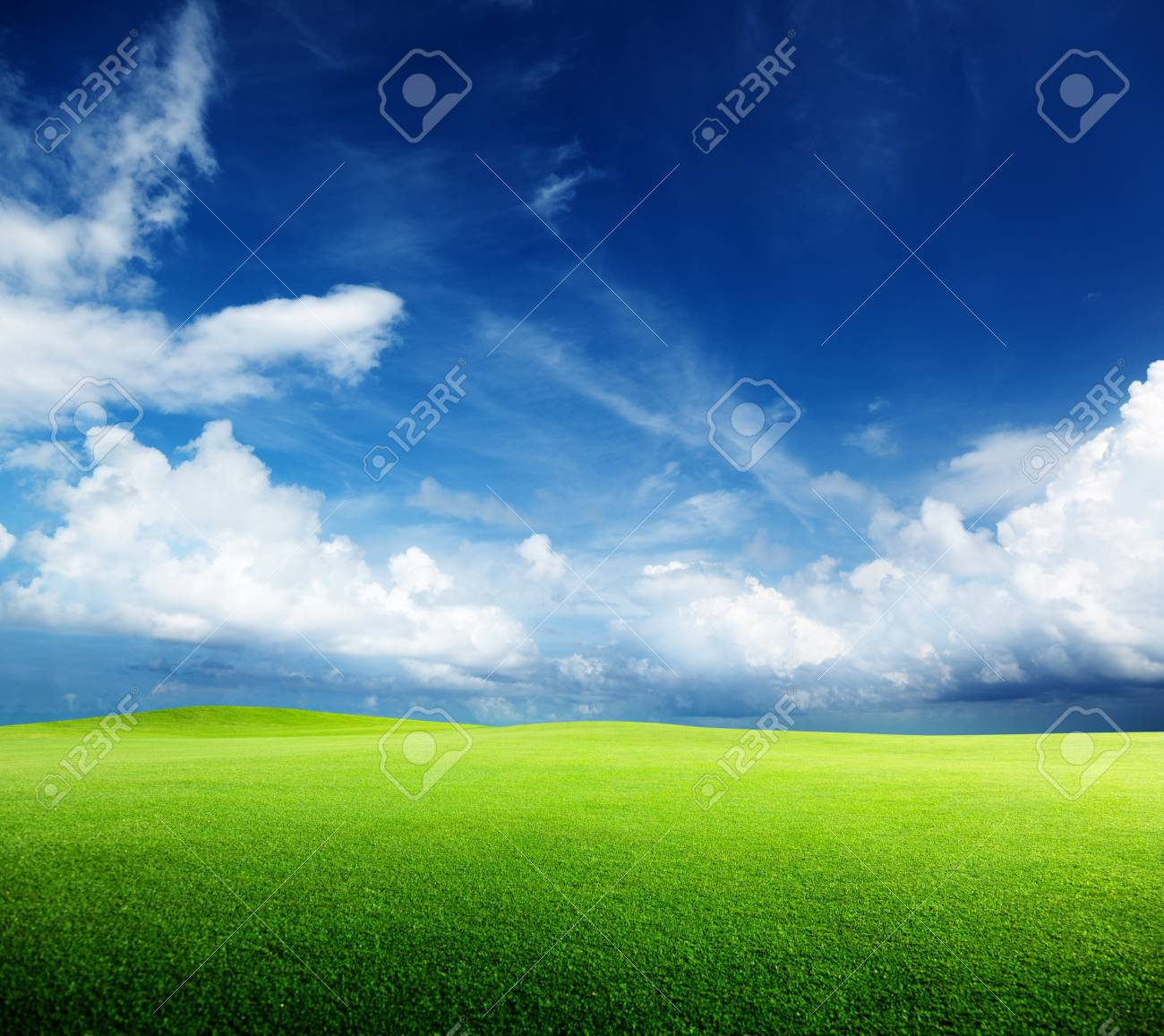 green field and sunny day Stock Photo - 8432053