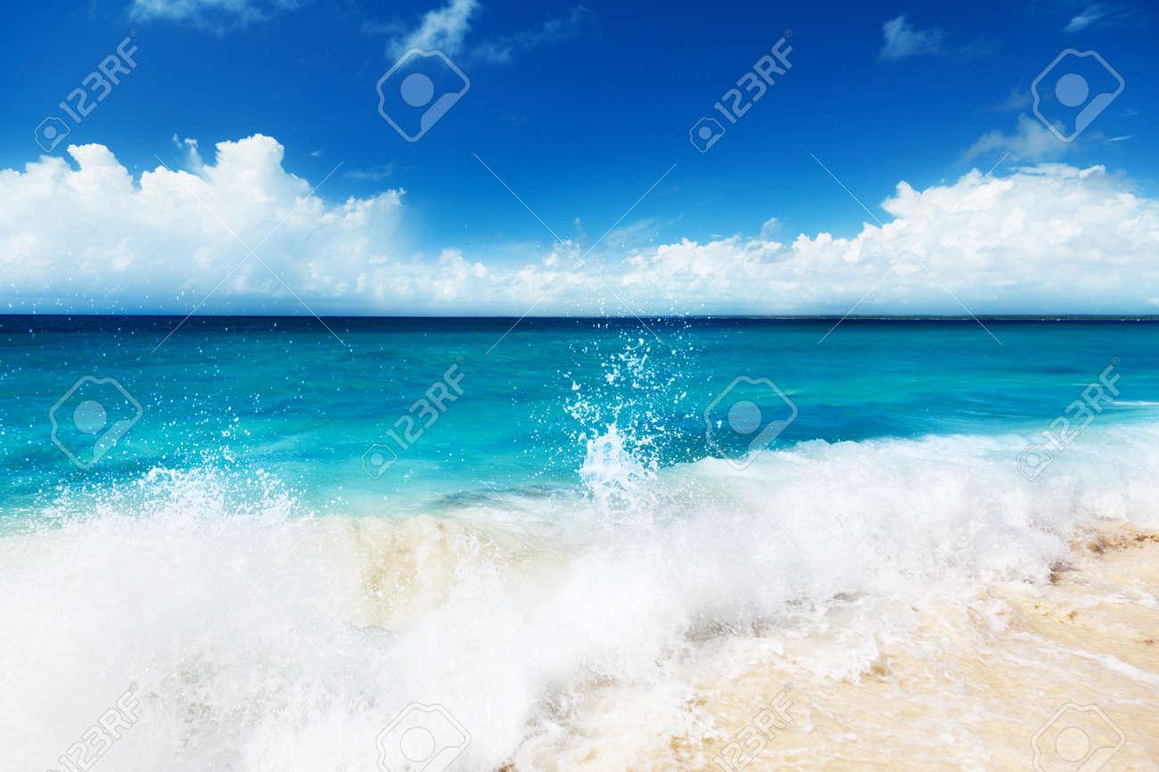 sand of beach caribbean sea Stock Photo - 8730939