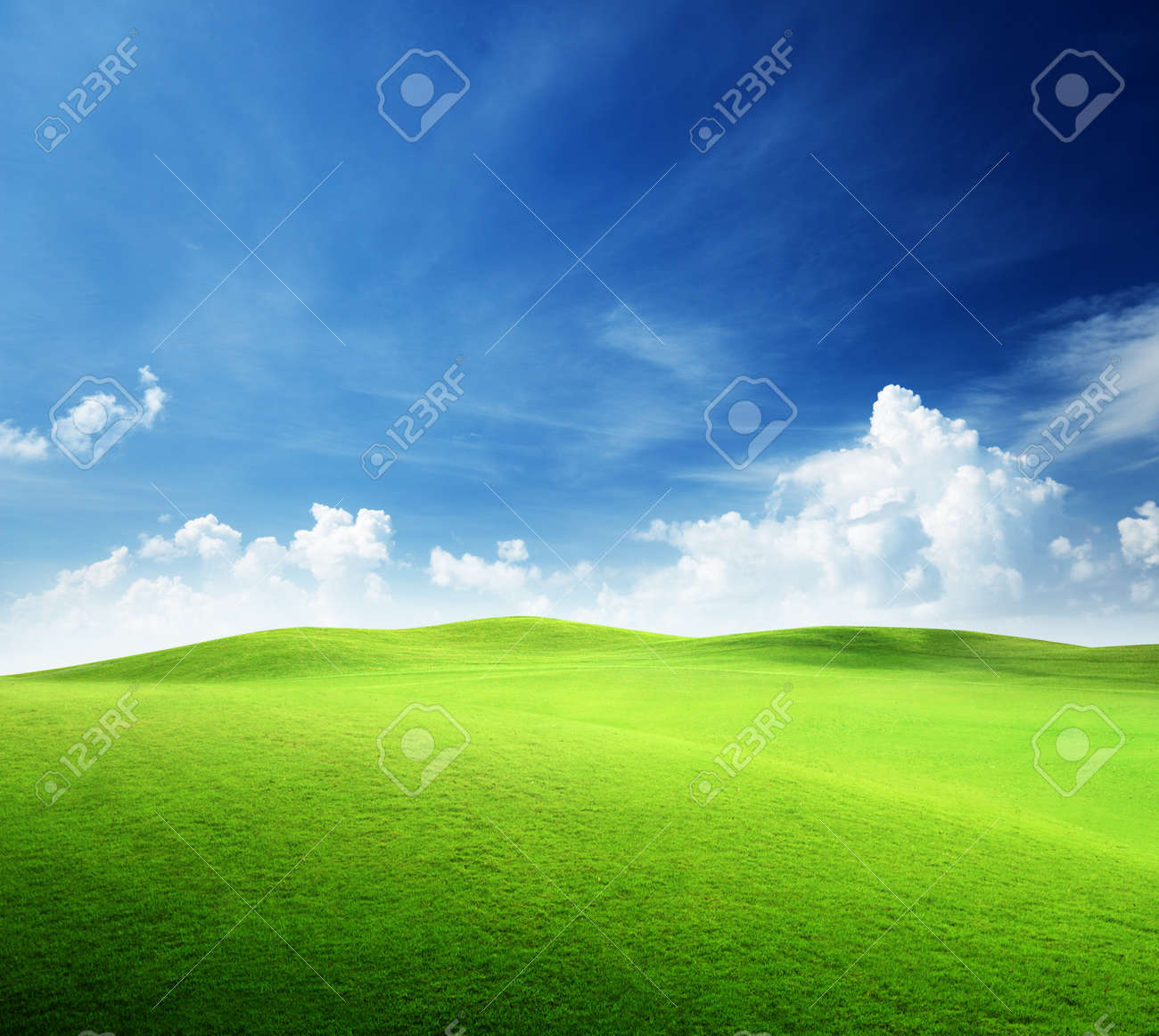 Field And Sky Photography Sky Field of Grass And