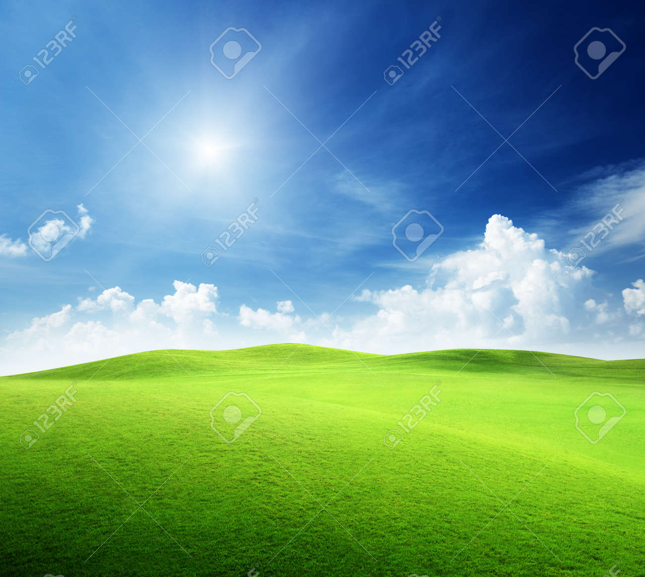 field of grass and perfect sky Stock Photo - 9595388