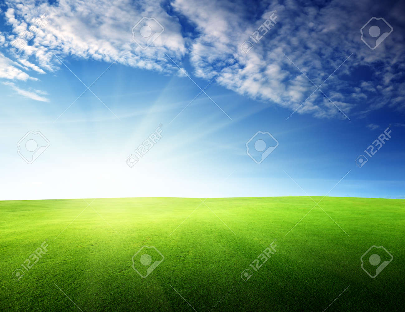 field of grass in sunset time Stock Photo - 10725257