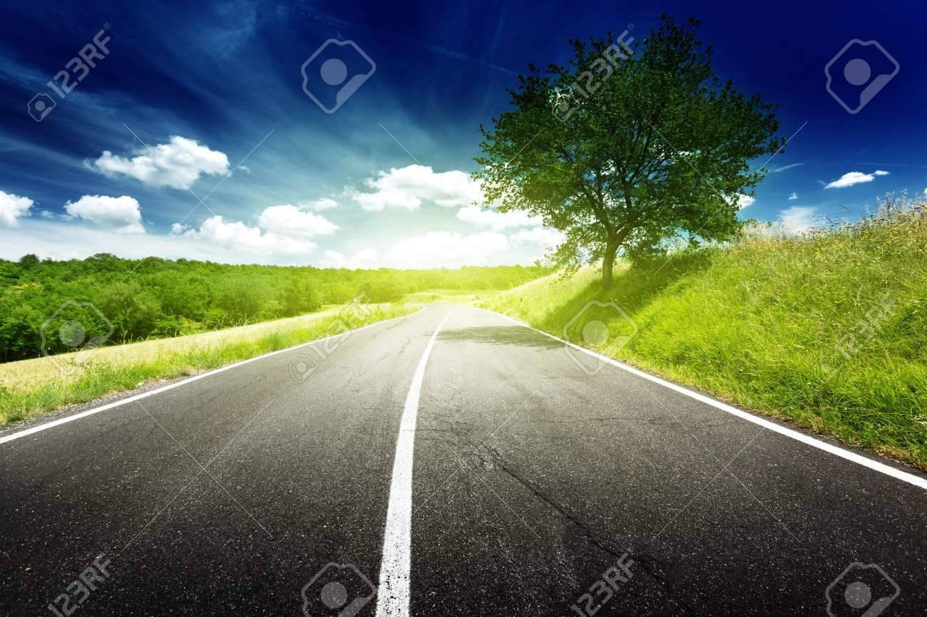asphalt road in Tuscany, Italy Stock Photo - 15307704