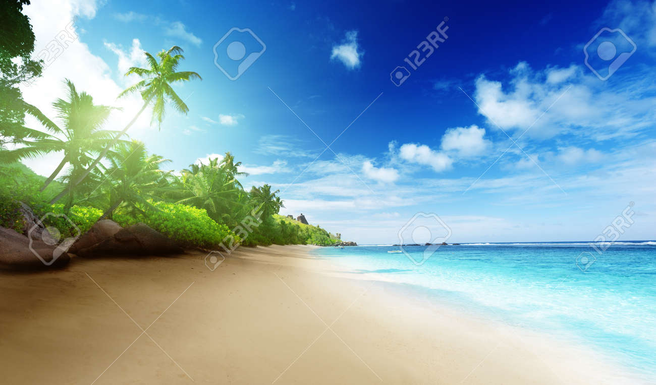 beach in sunset time on Mahe island in Seychelles - 16113499