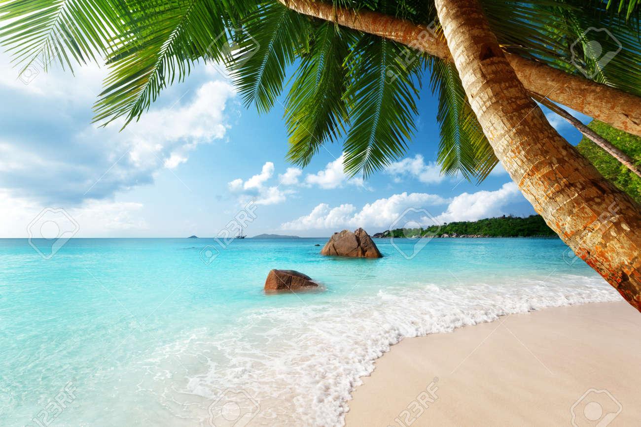 Anse Lazio beach on Praslin island in Seychelles Stock Photo - 17411882