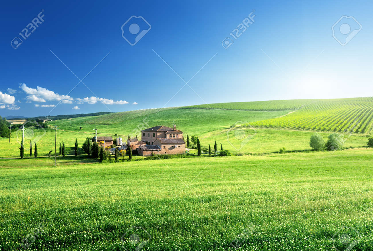 Tuscany landscape with typical farm house, Italty Stock Photo - 18820333