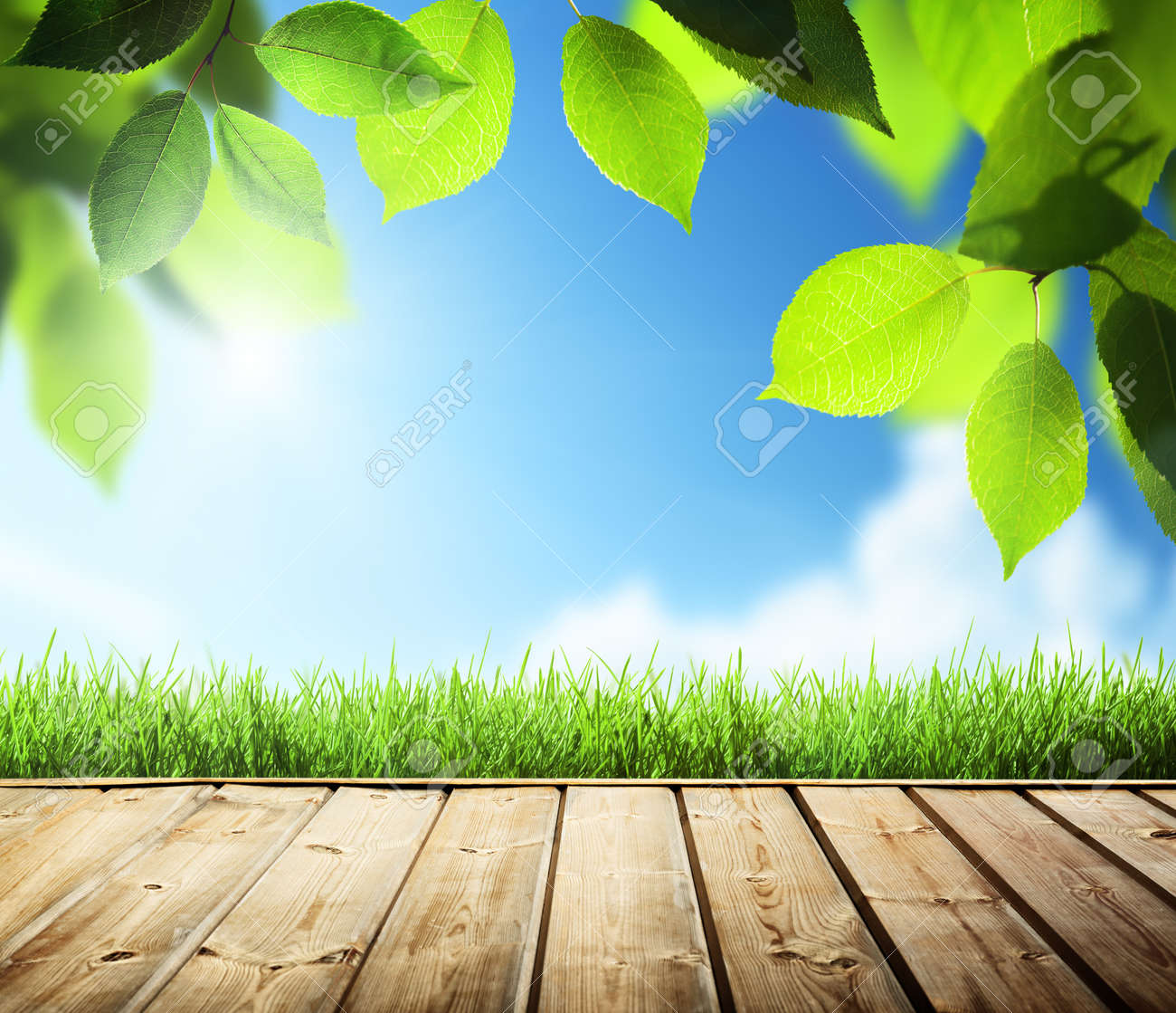summer background with wooden surface Stock Photo - 20434161