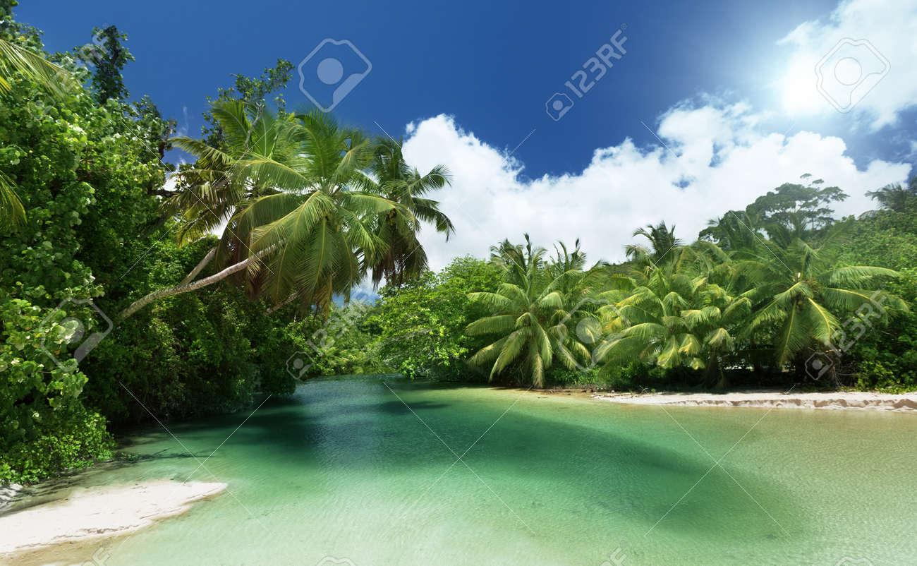 lake and palms, Mahe island, Seychelles Stock Photo - 22100202