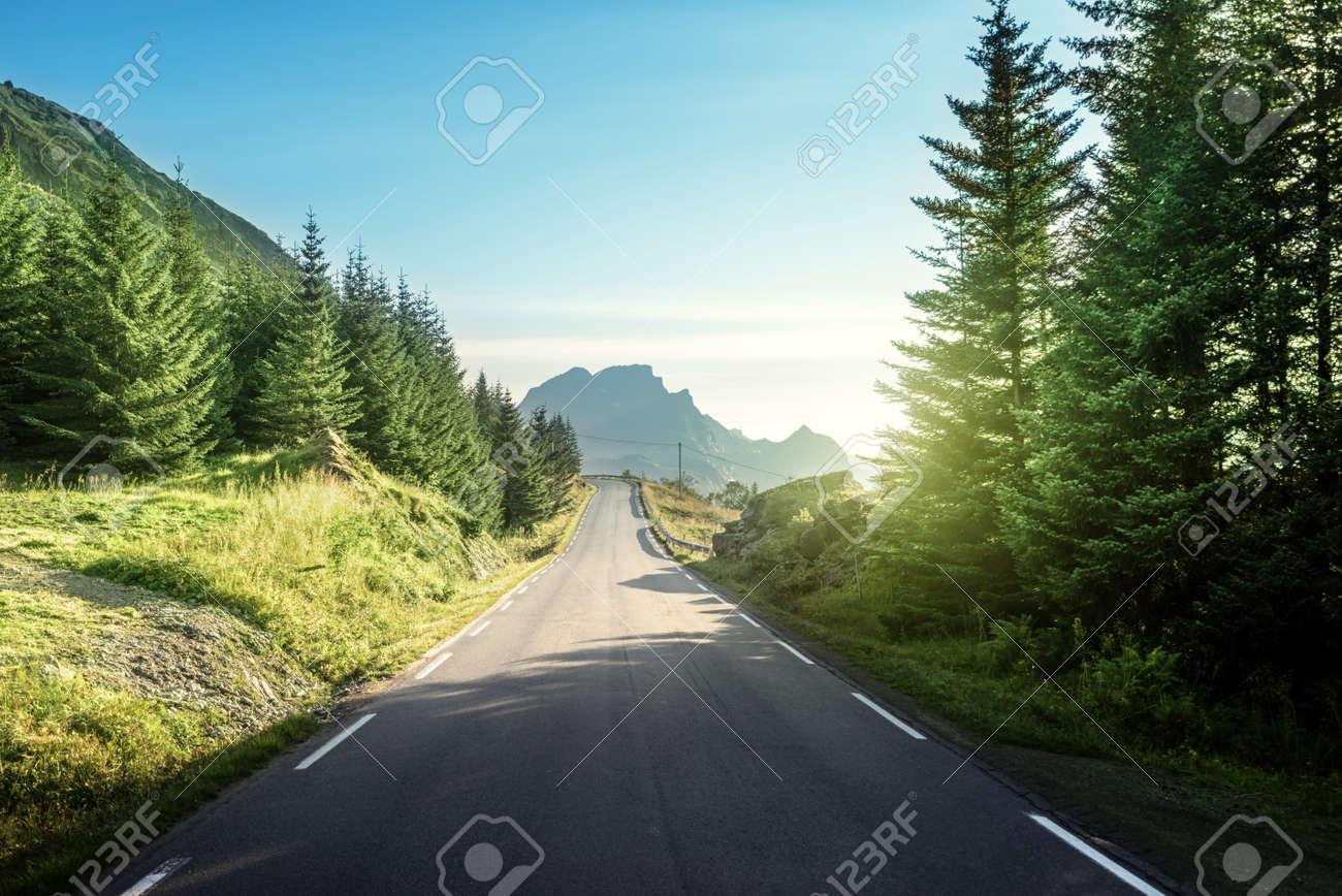 road in mountain, Lofoteb iskands, Norway - 49265701