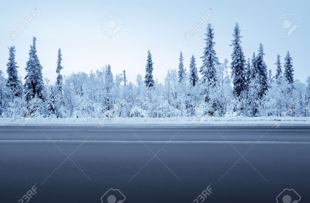 road in winter forest - 93232270
