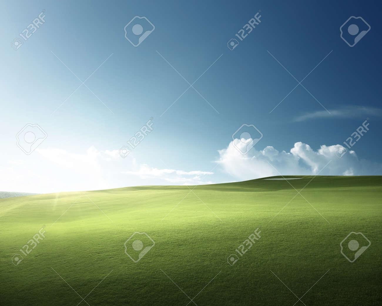 spring grass, golf field - 106587968