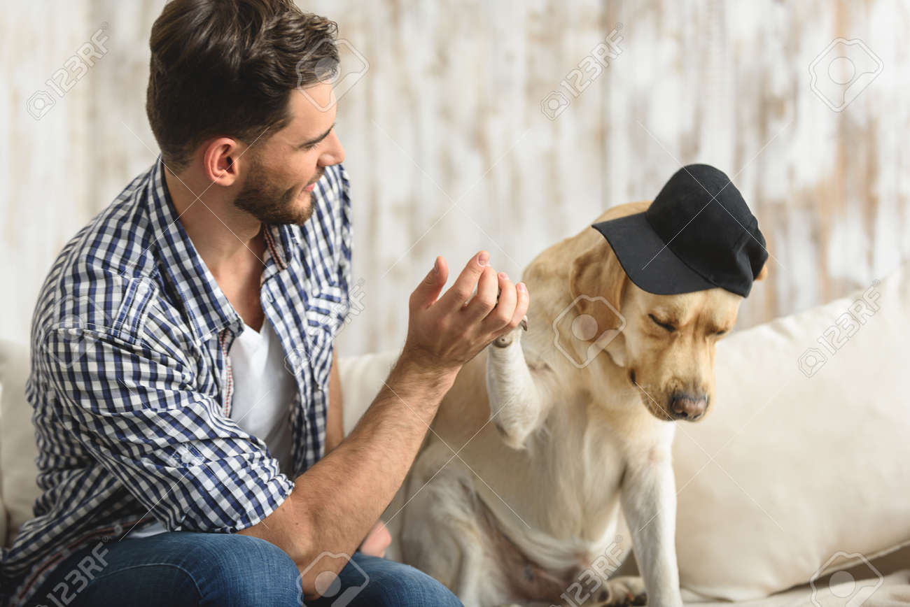 Puppy Giving High Five To A Handsome Guy On A Couch Stock Photo ...