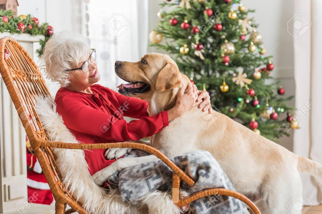 Fine Being Thankful Joyful Old Woman Is Hugging Her Dog While Resting Frankydiablos Diy Chair Ideas Frankydiabloscom