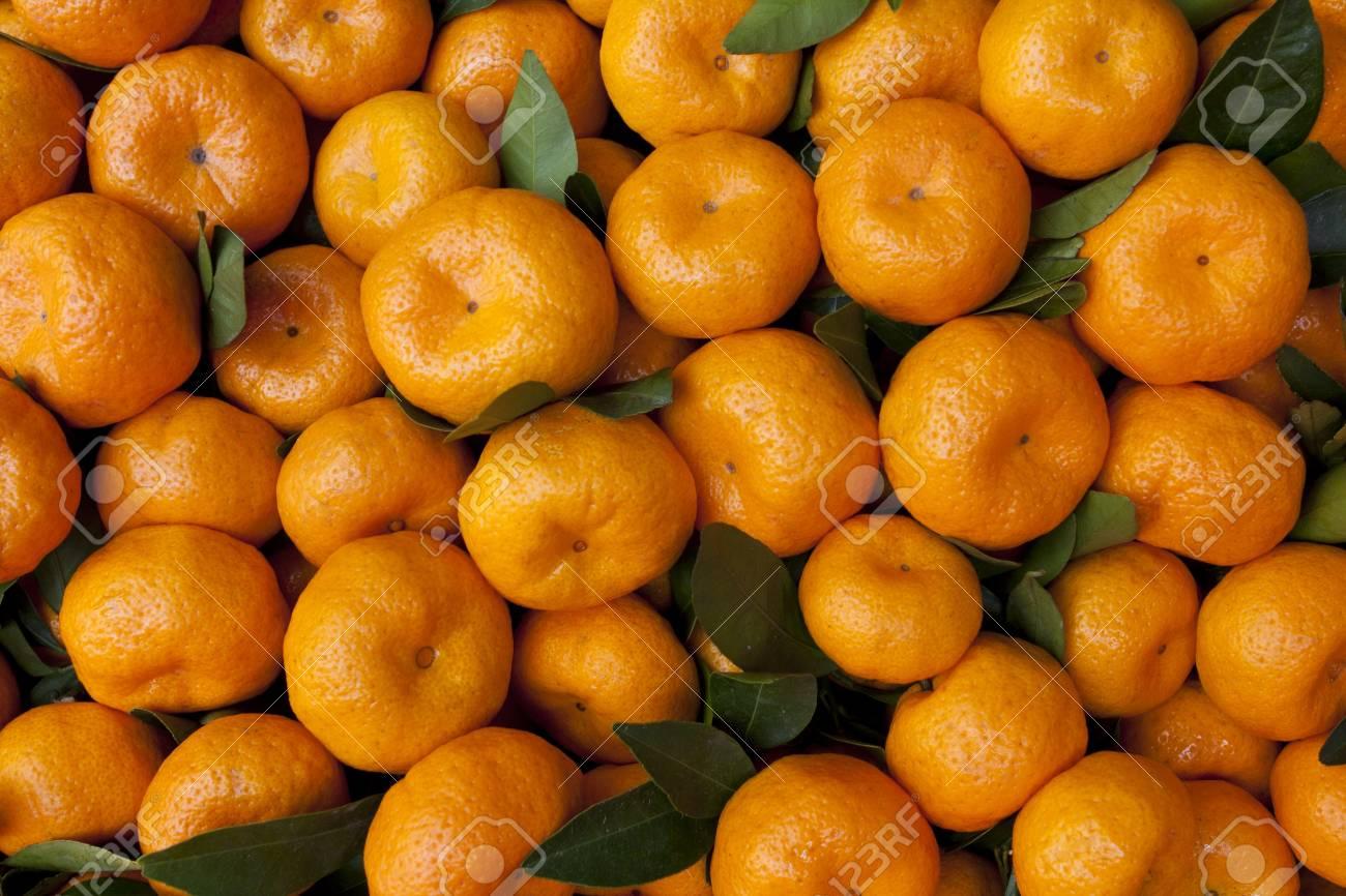 Fresh oranges in market Stock Photo - 16877751