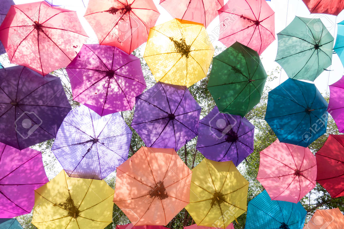 Colorful Umbrella Hang For Decorate Backdrop Celebration In Outdoor