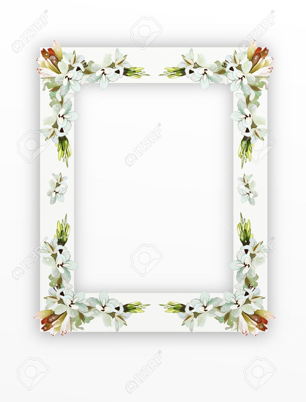 A Beautiful Tuberose Flowers Arranged As A Vertical Frame Isolated ...