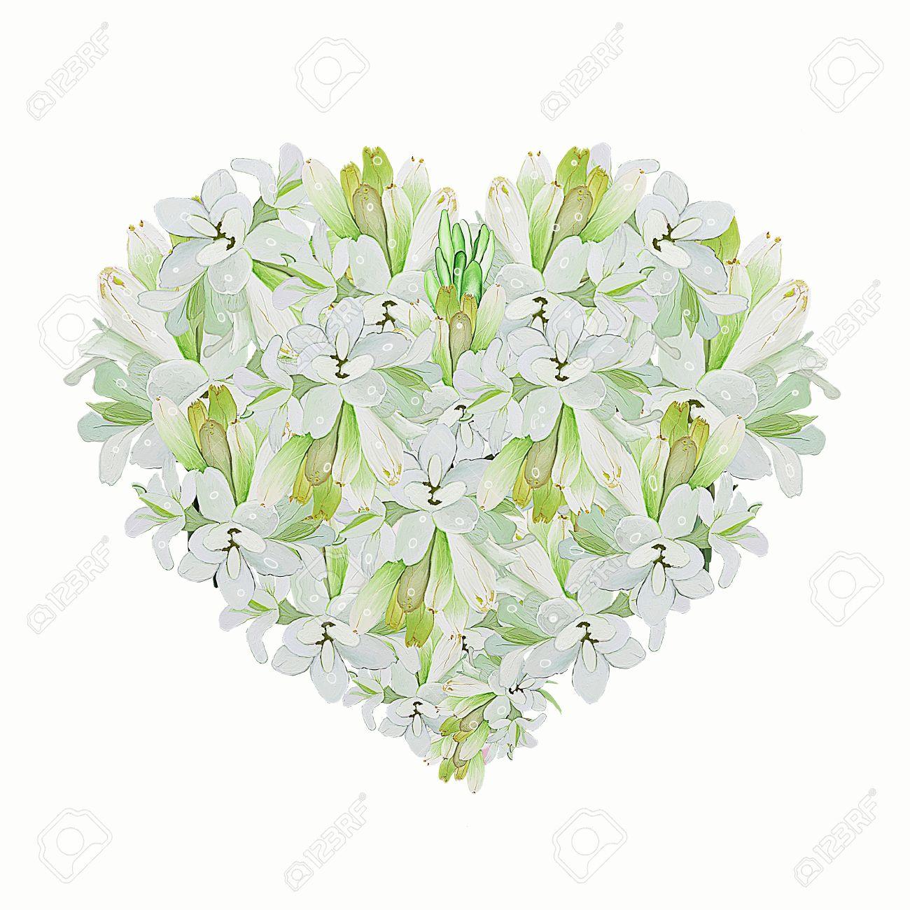 A Beautiful Heart Shape Of White Tuberose Flower On A White