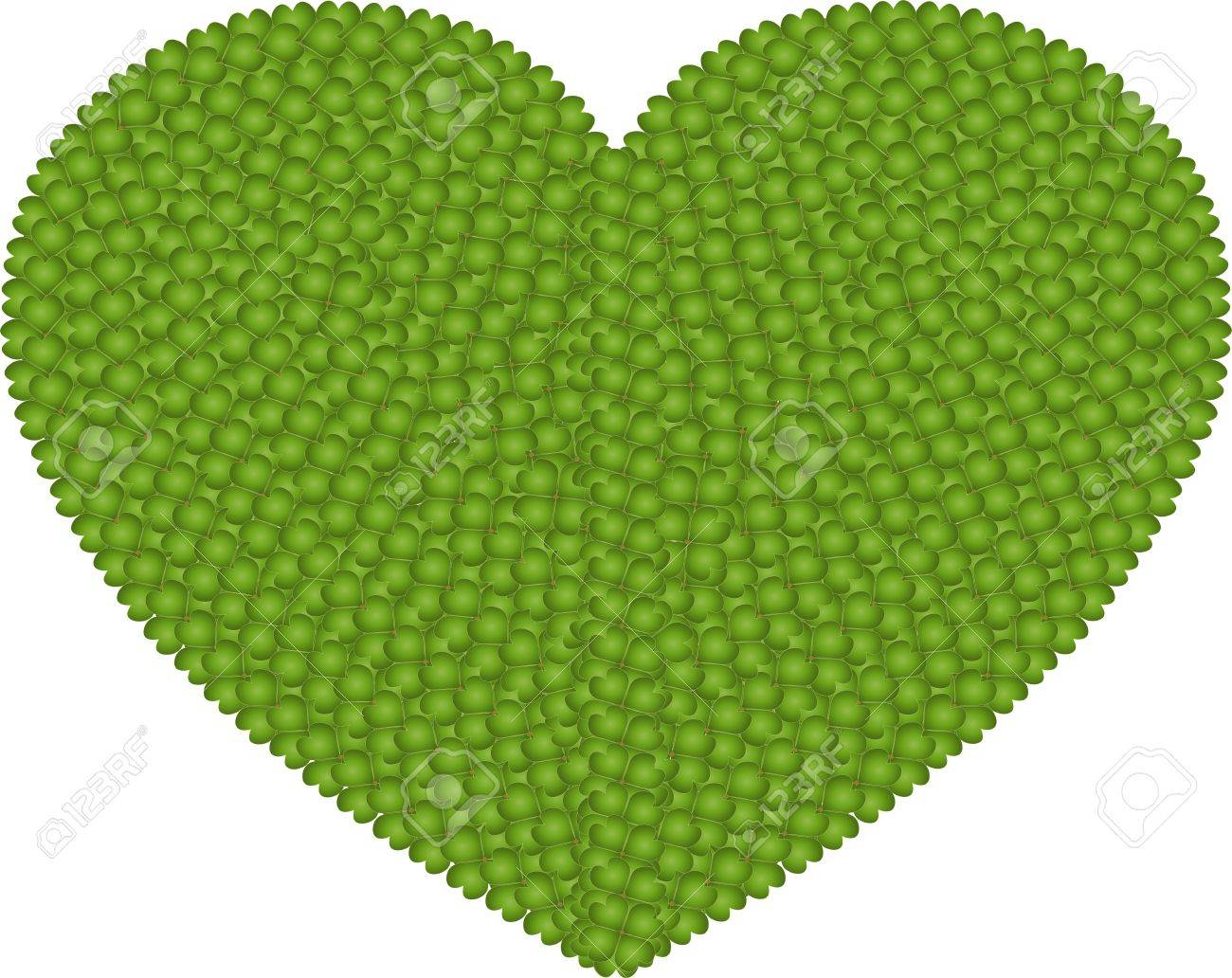 Ecology and Love Concept, Fresh Green Four Leaf Clover Forming A Big Heart Shape Isolated on White Background Stock Photo - 17155741