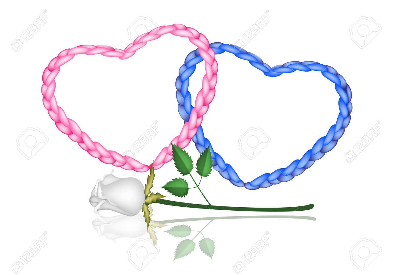 Love Concept, Illustration of Beautiful Pink and Blue Heart Shapes Made of The Rope with A Perfect White Rose - 18318680