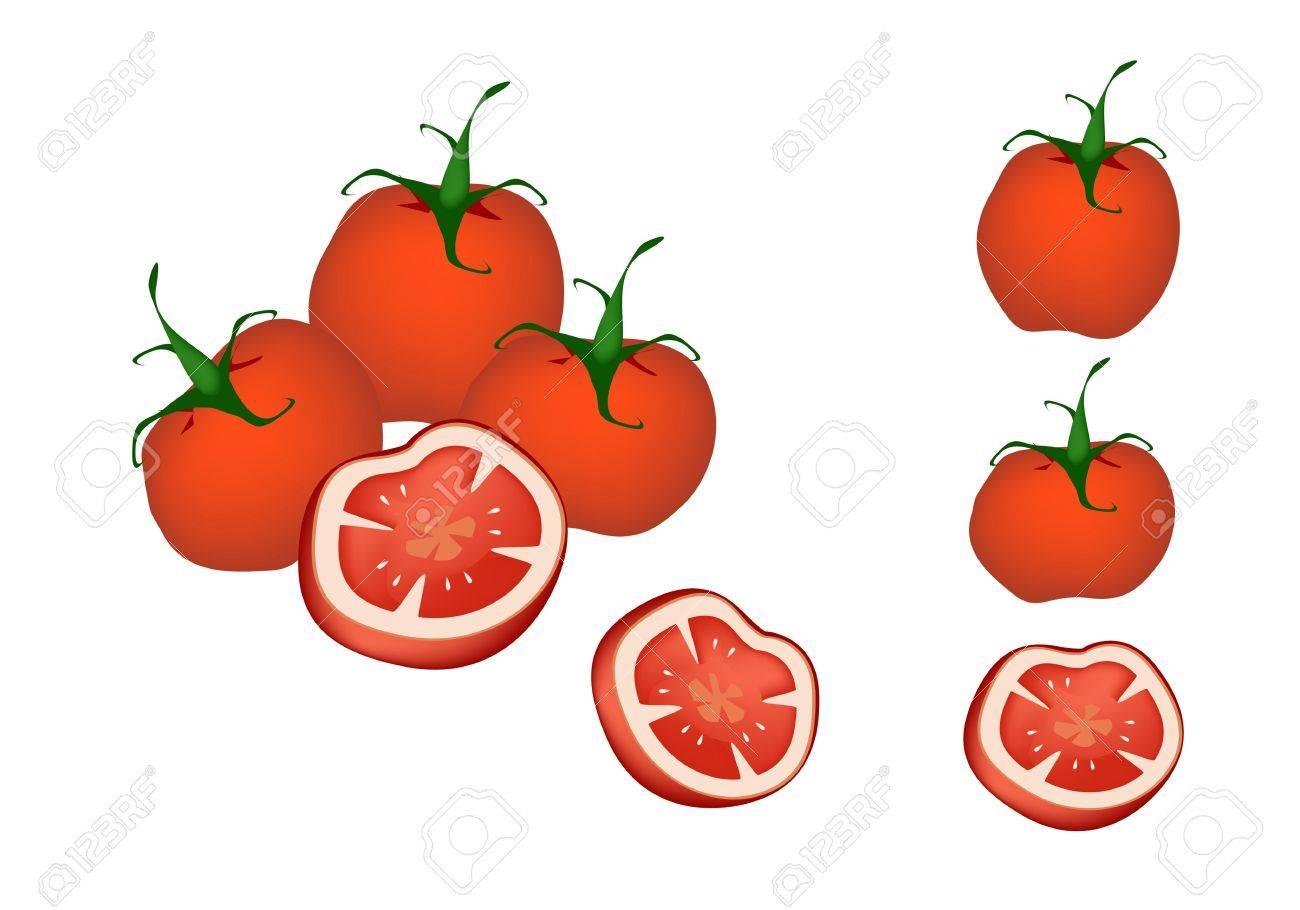 野菜 新鮮な熟した赤のイラスト コレクション トマトとトマト断面の白い背景で隔離のイラスト素材 ベクタ Image 19147489
