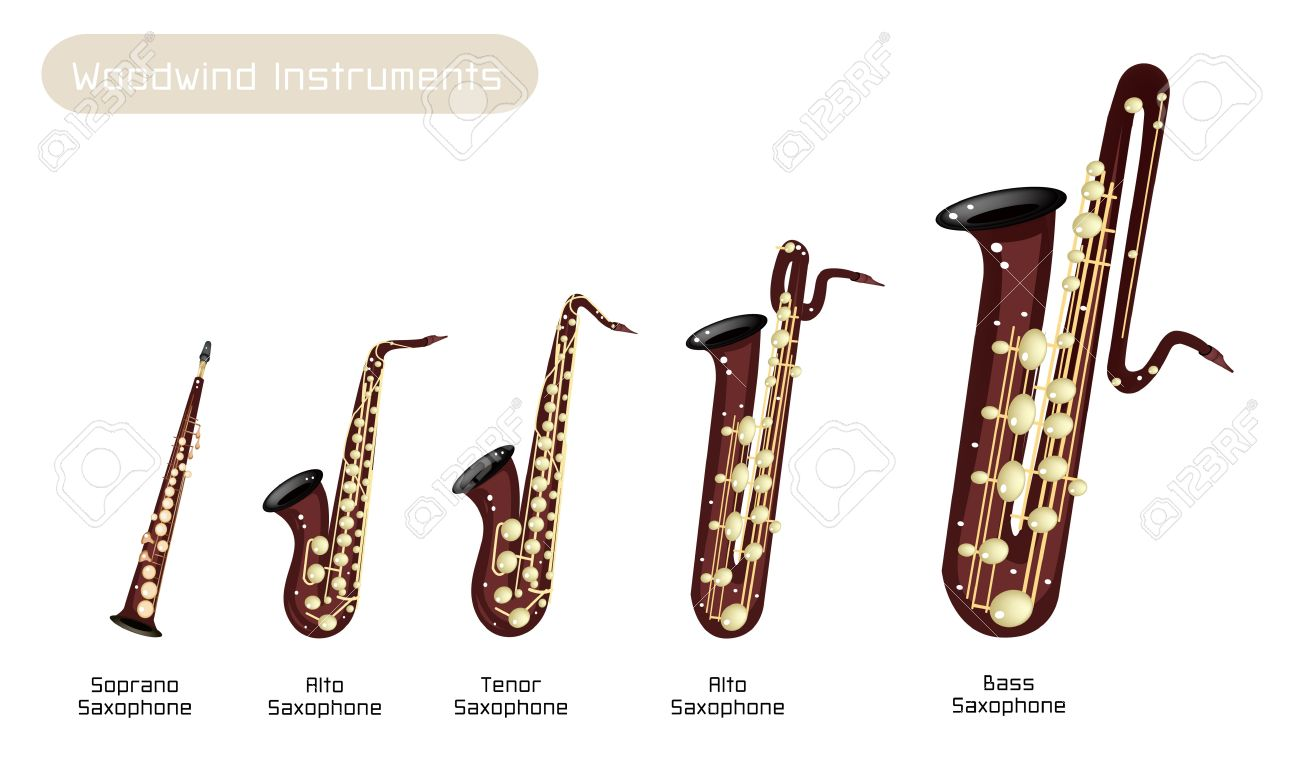 Various Kind of Brown Vintage Woodwind Instrumen, Soprano Saxophone, Alto Saxophone, Tenor Saxophone, Baritone Saxophone and Bass Saxophone Isolated on White Background Stock Vector - 20485835