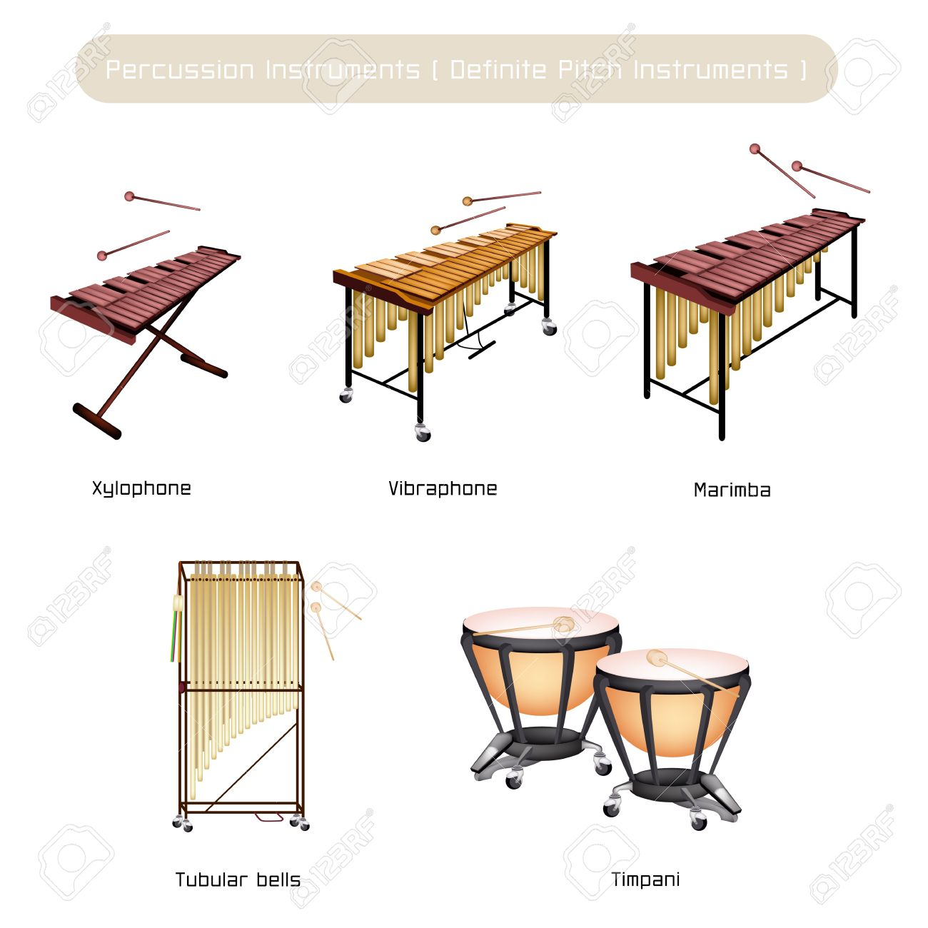 Illustration Brown Color Collection of Vintage Percussion Instruments, Vibraphone, Marimba, Xylophone, Tubular Bells and Timpani Isolated on White Background - 20477796