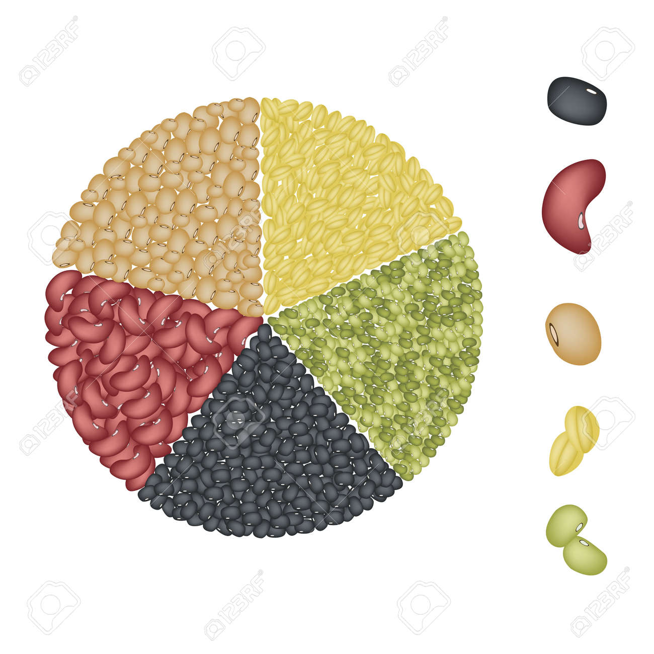 An Illustration Collection of Different Dried Beans, Mung Bean, Kidney Bean, Black Eye Bean, Soy Bean and Yellow Split Peas Forming A Pie Chart - 21826972
