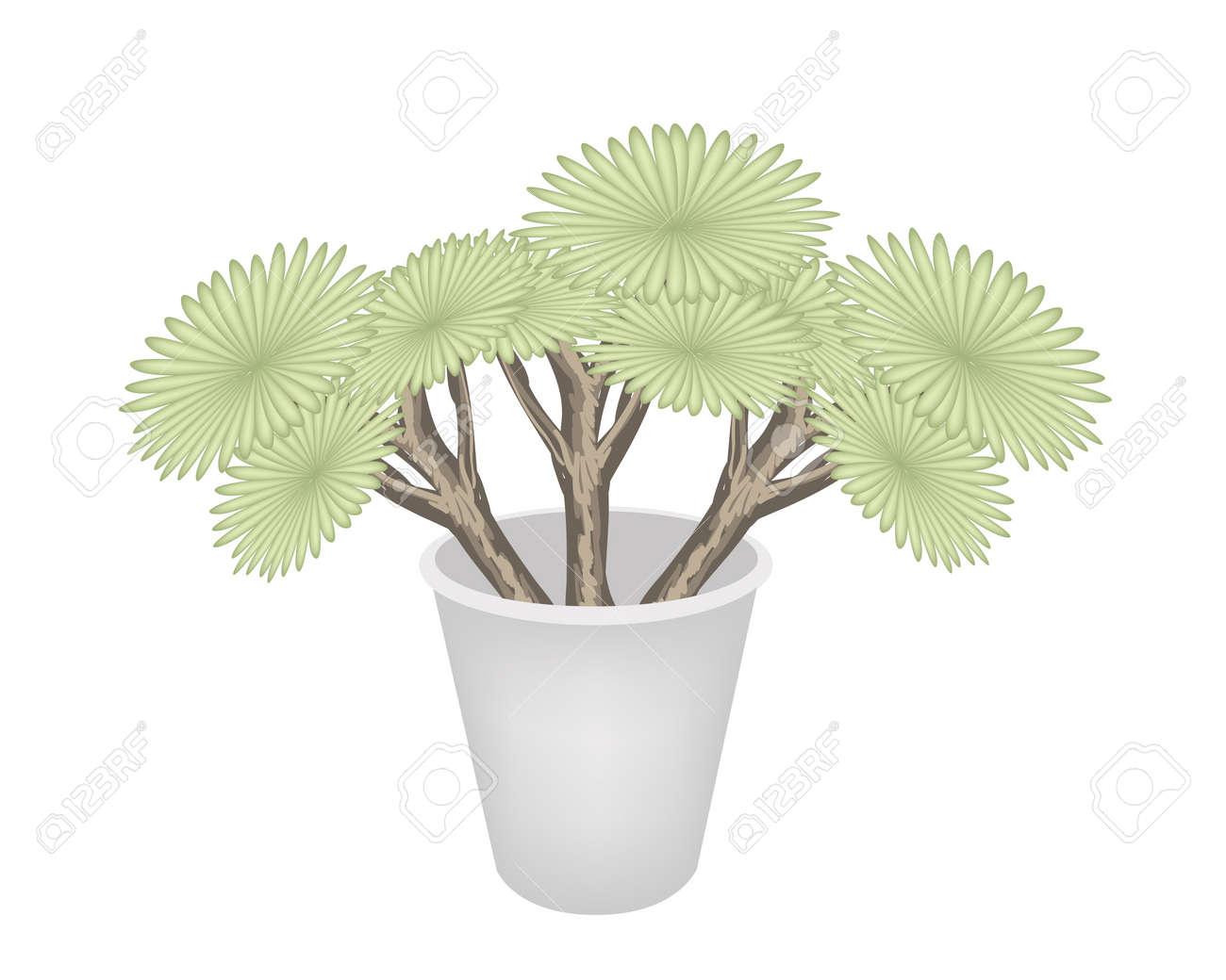 Concepto Ecolgico Una Ilustracin Verdes rboles Y Plantas De