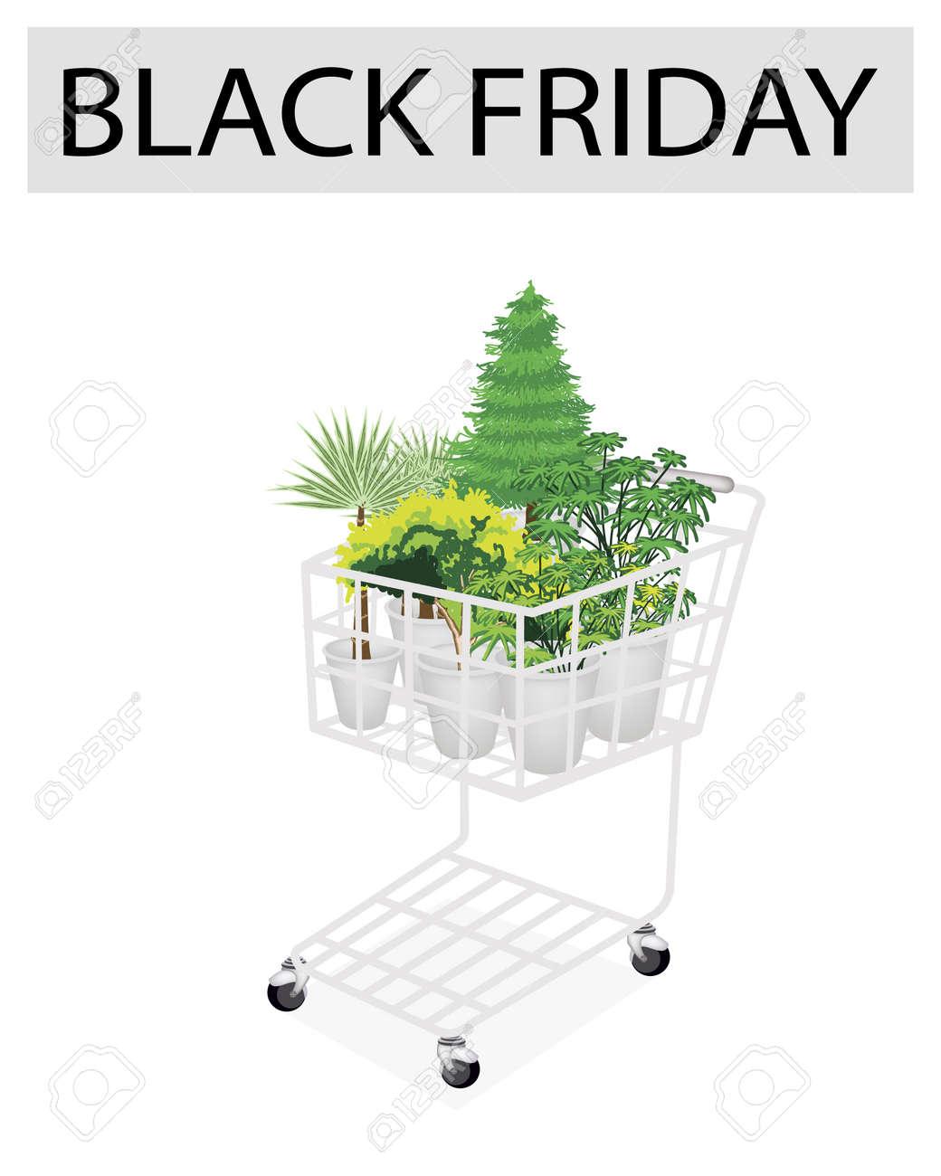 Foto Di Piante Sempreverdi un carrello pieno di varietà di piante, sempreverdi e alberi verdi per  venerdì nero shopping season e più grande promozione di sconto in un anno.