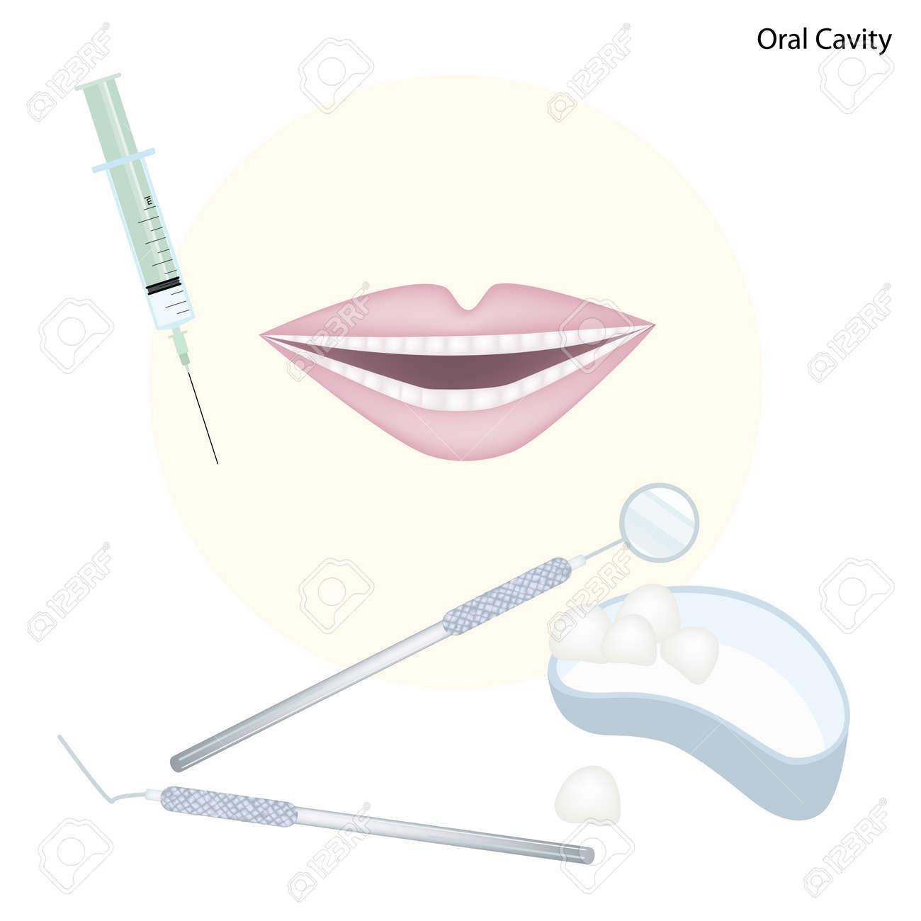 Banque d images - Concept médicale, Illustration de dentiste Outils pour  les soins dentaires et la cavité buccale. 733e9639949a
