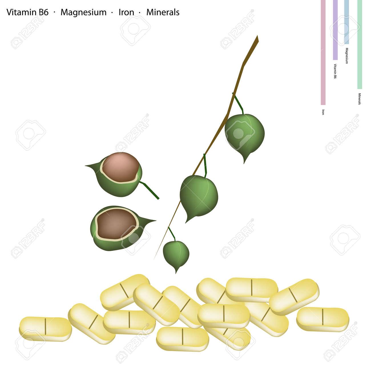 ijzer en magnesium