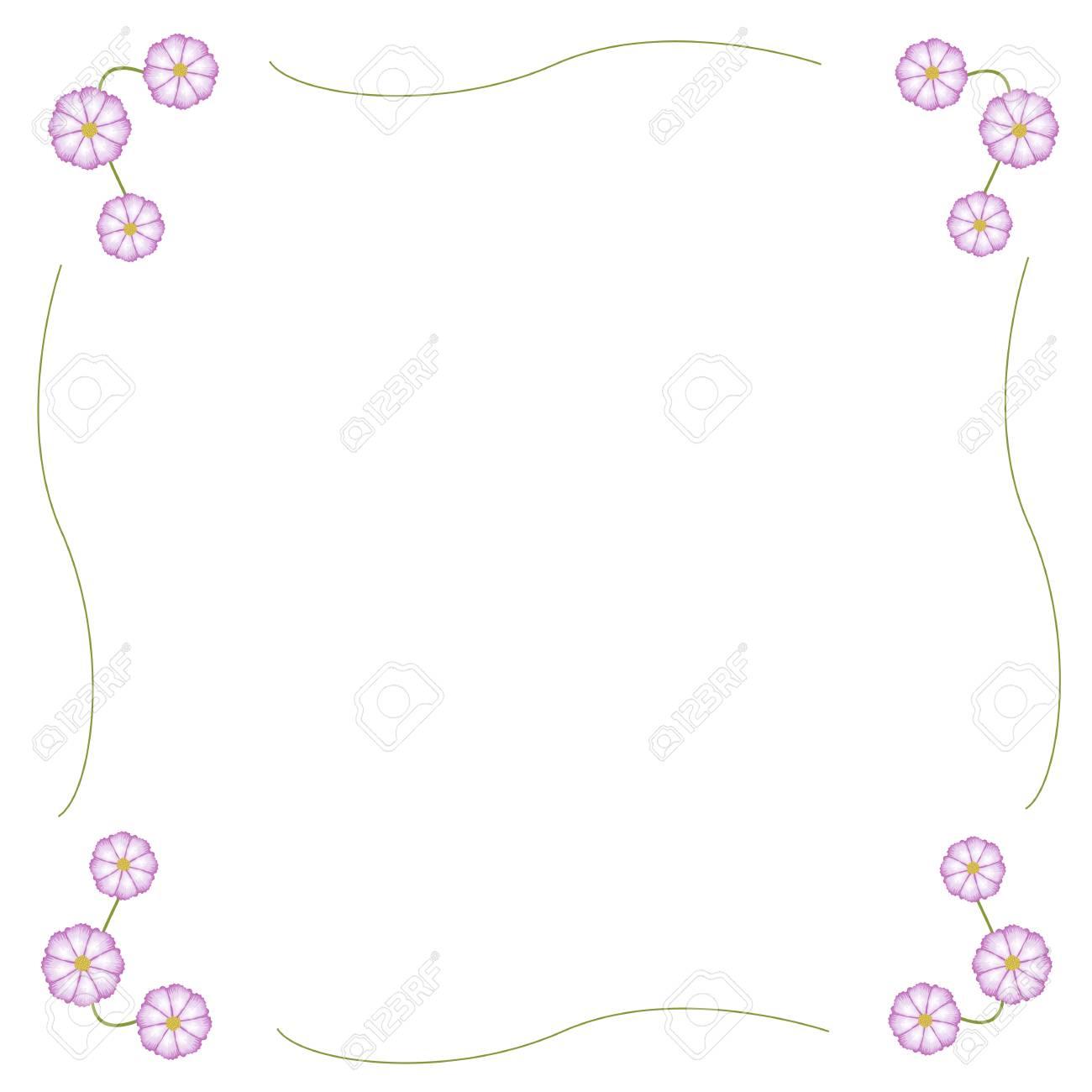 Symbol Der Liebe, Rahmen Der Fuchsia Und Weißen Kosmos Blume Oder ...