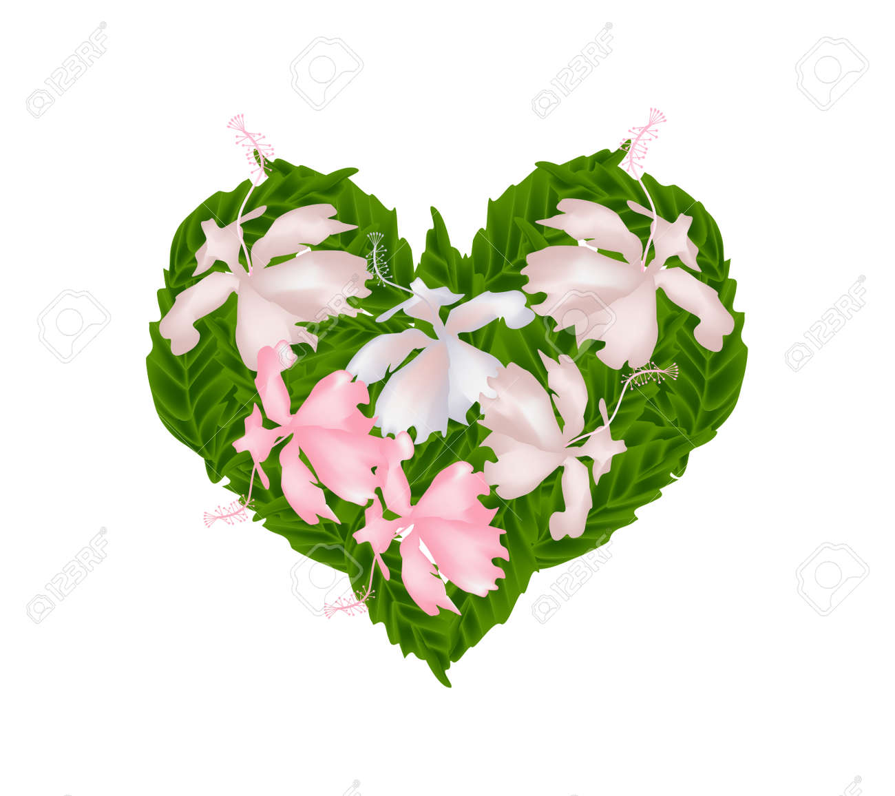 Love Concept Illustration Of Pink Hibiscus Flowers Or Pink Rose