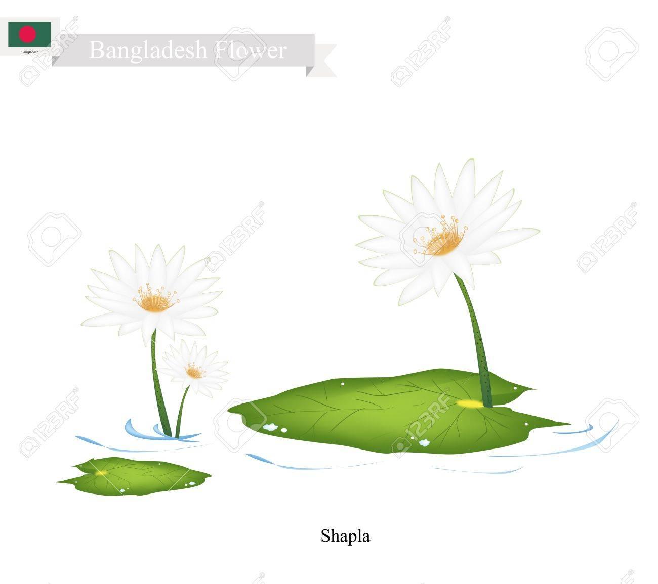 Бангладеш цветок