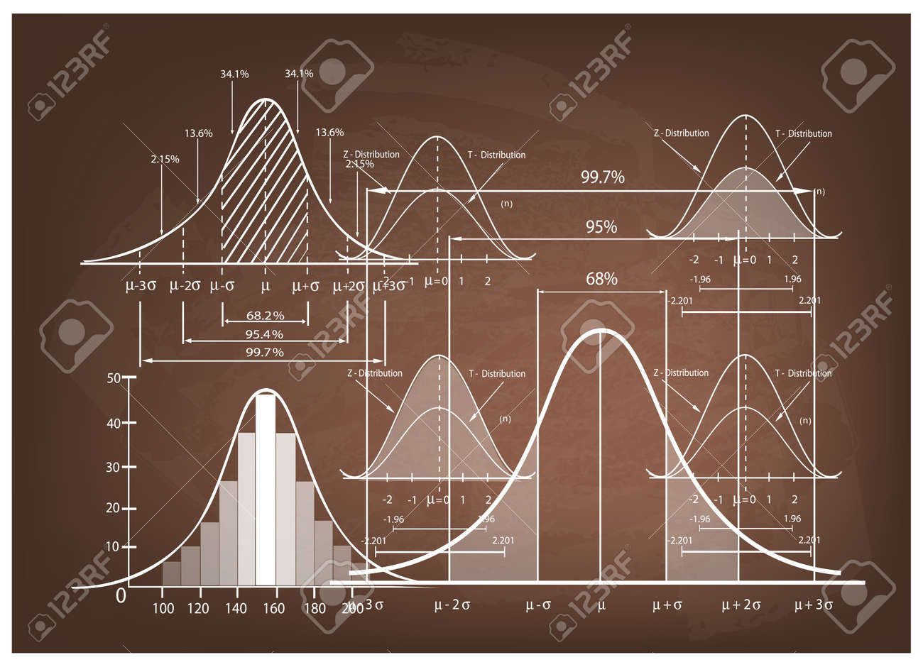Business and Marketing Concepts, Illustration of Standard Deviation Diagram, Gaussian Bell or Normal Distribution Curve Population Pyramid Chart for Sample Size Determination. - 61524339