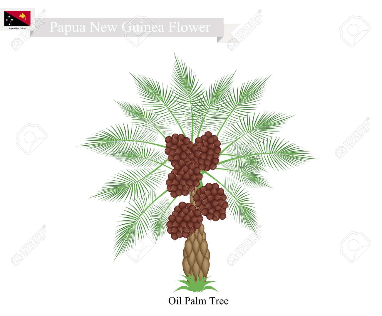 Papua New Guinea Tree, Illustration of Coconut Tree. The Native Tree of Papua New Guinea. - 63151292