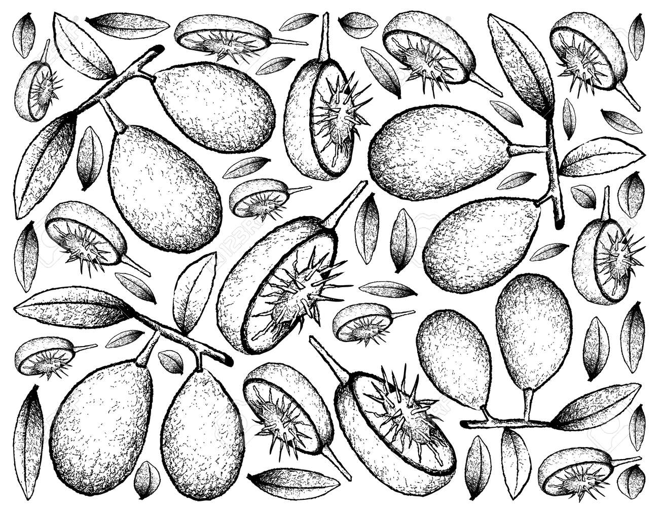 新鮮なアンバレラやスポンディアス ダルチスの果物の手描きのスケッチのトロピカルフルーツ イラストの壁紙の背景 のイラスト素材 ベクタ Image