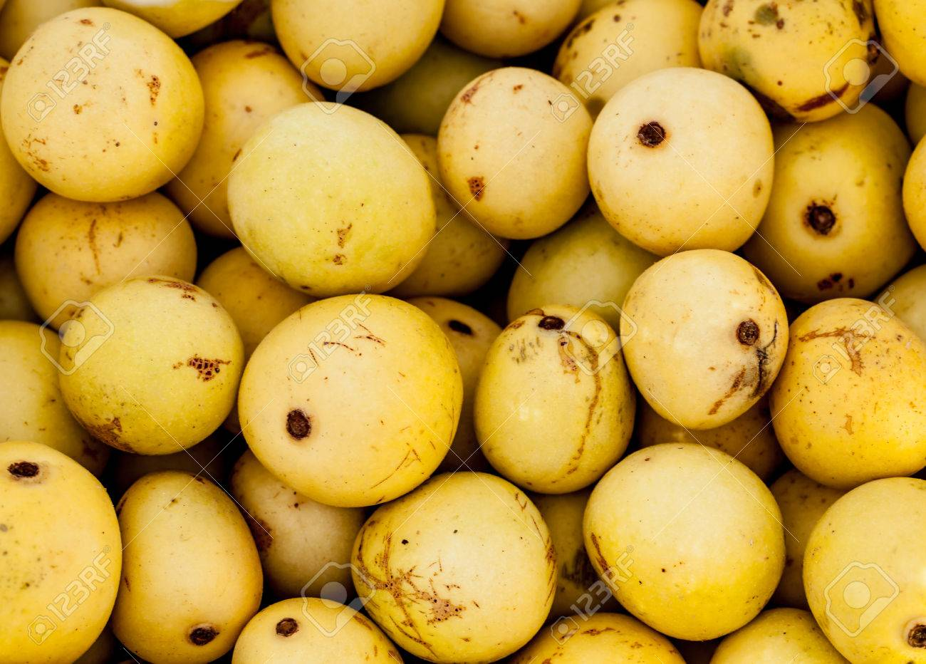 Image result for the marula fruit