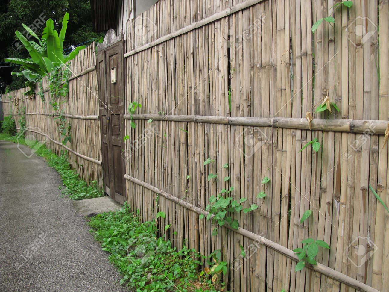 alte holztür und bambuszaun im ländlichen bereich lizenzfreie fotos