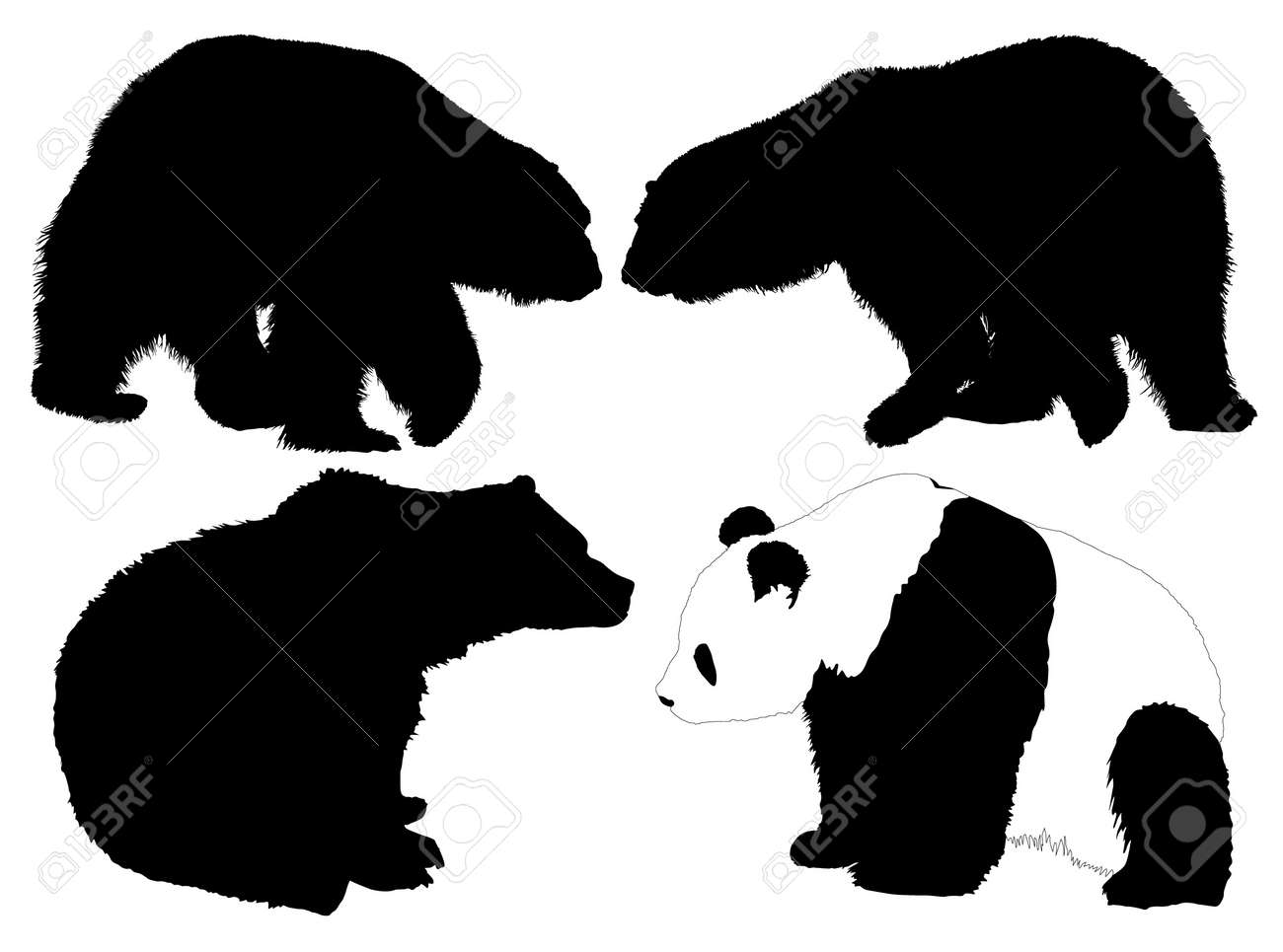 bear silhouette stock photos royalty free bear silhouette images  - bear silhouette bear silhouette on white background