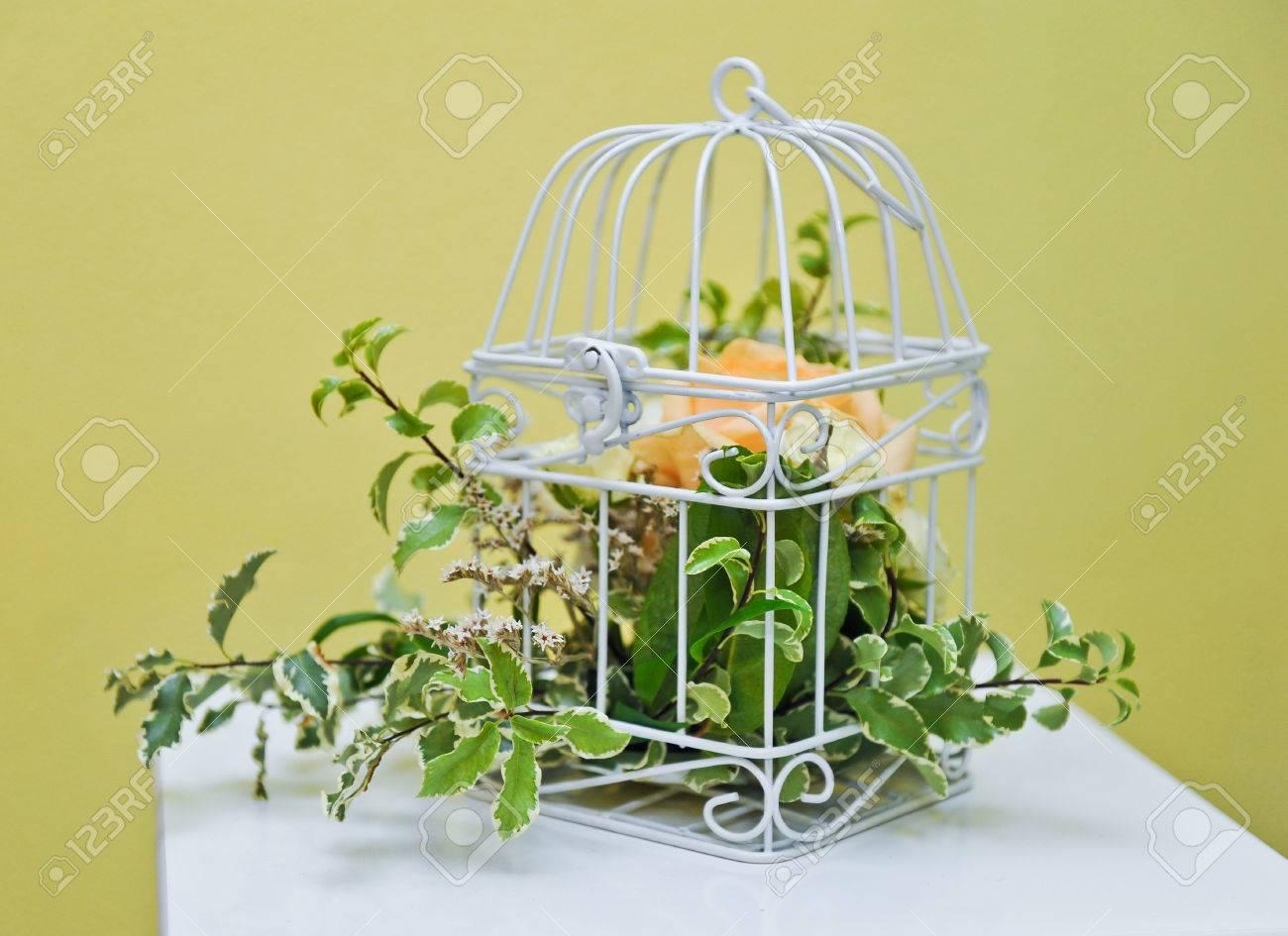Decoracin De Flores De Colores Naranja Y Verde Brillante En Blanco