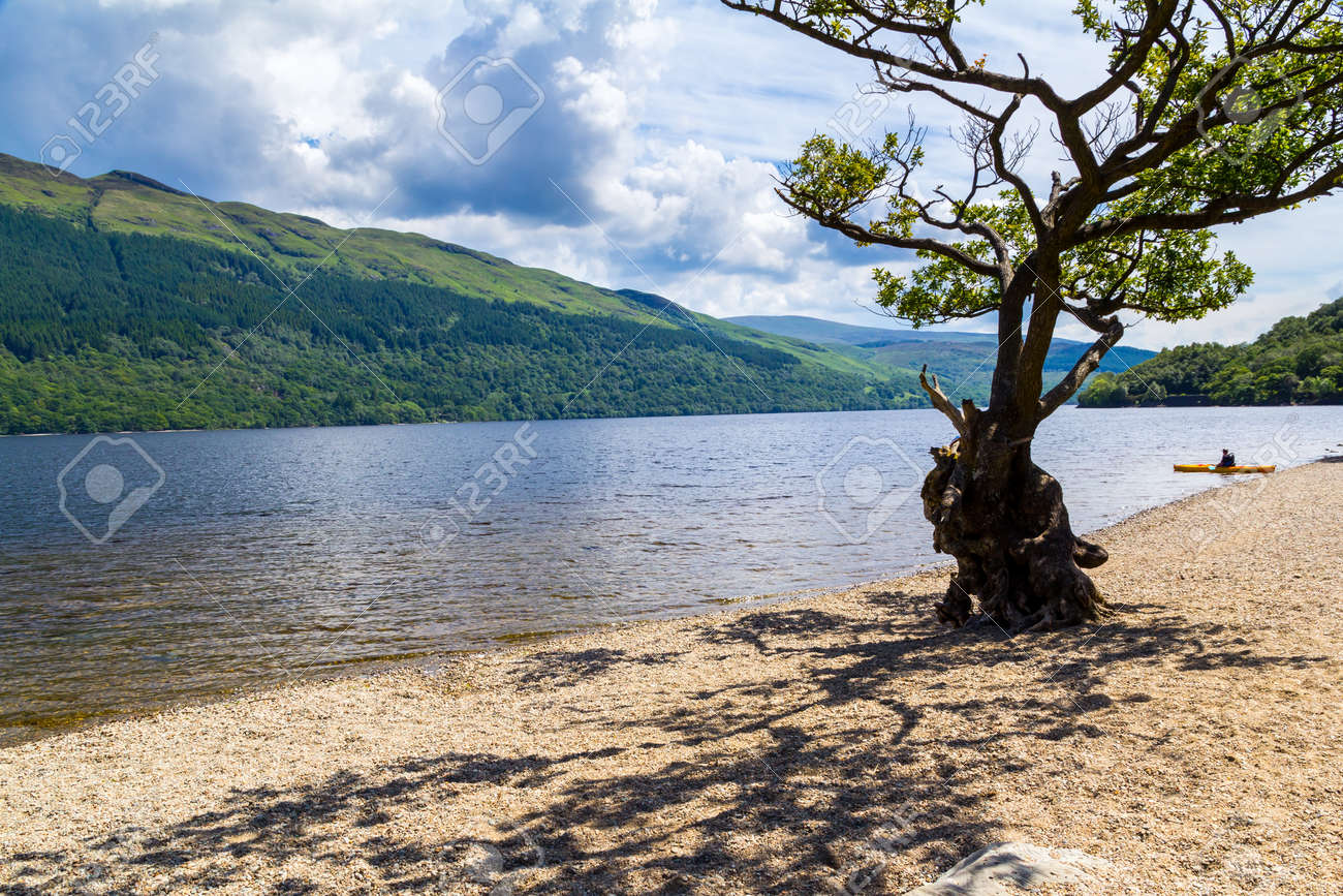Firkin Point at Loch Lomond in The Trossachs National Park Scotalnd UK Stock Photo - 20704878