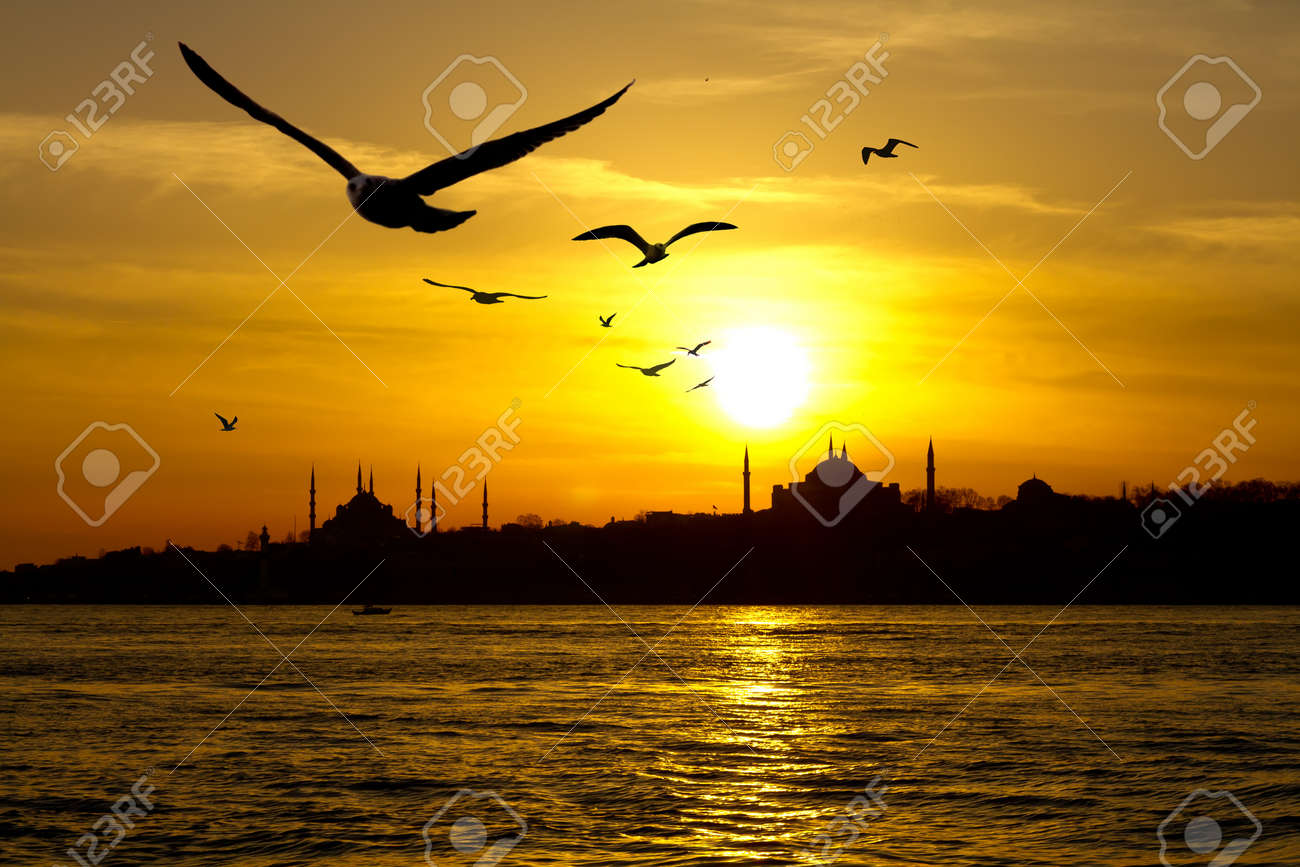 Istanbul - 14562555