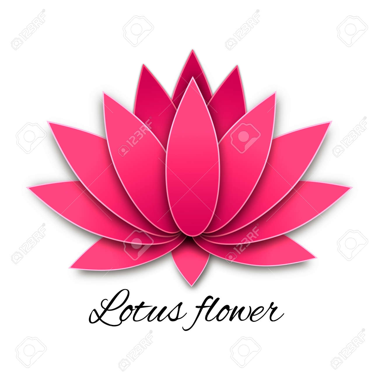 The Beautiful Lotus Flower On A White Background Royalty Free