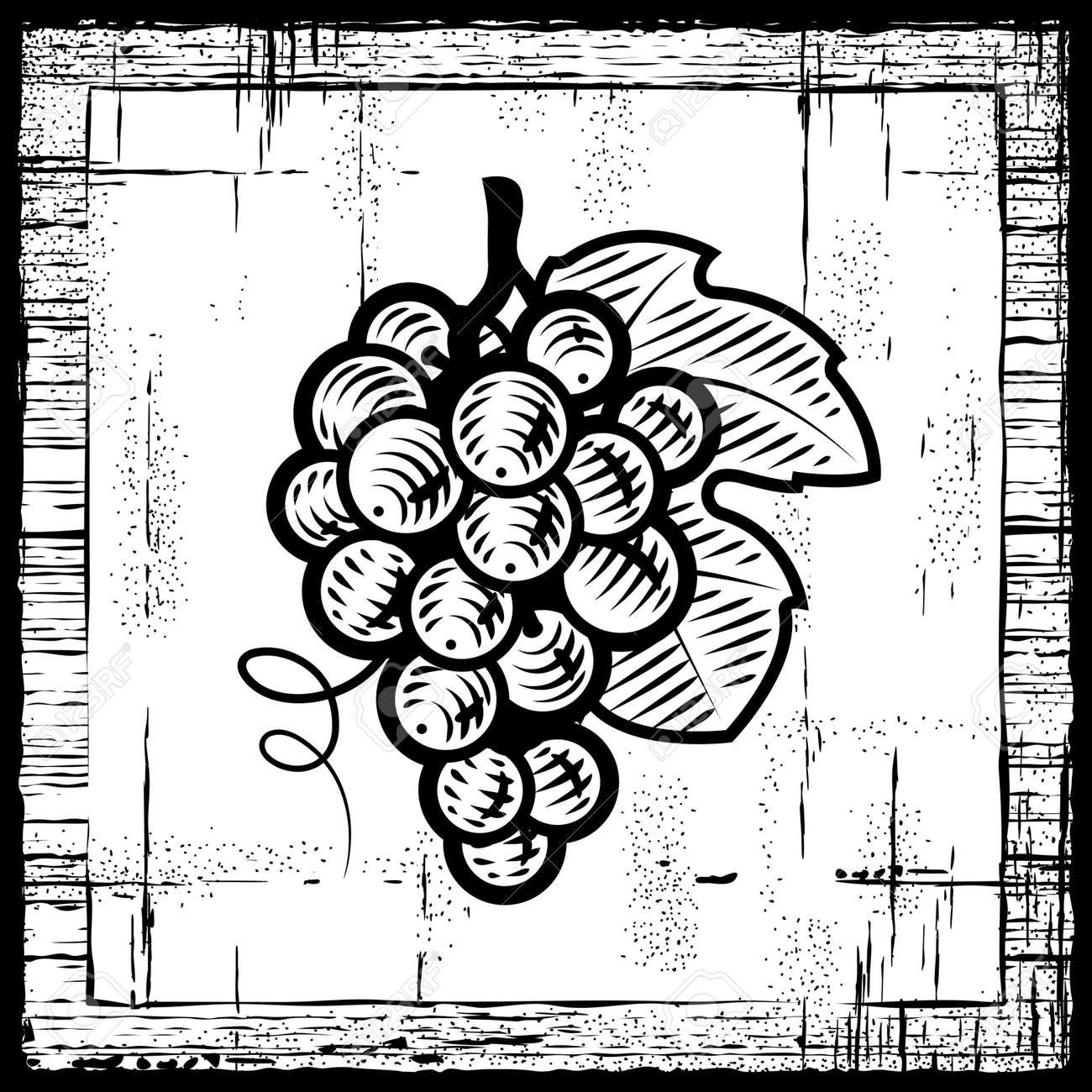 Retro grapes bunch black and white Stock Vector - 9397650