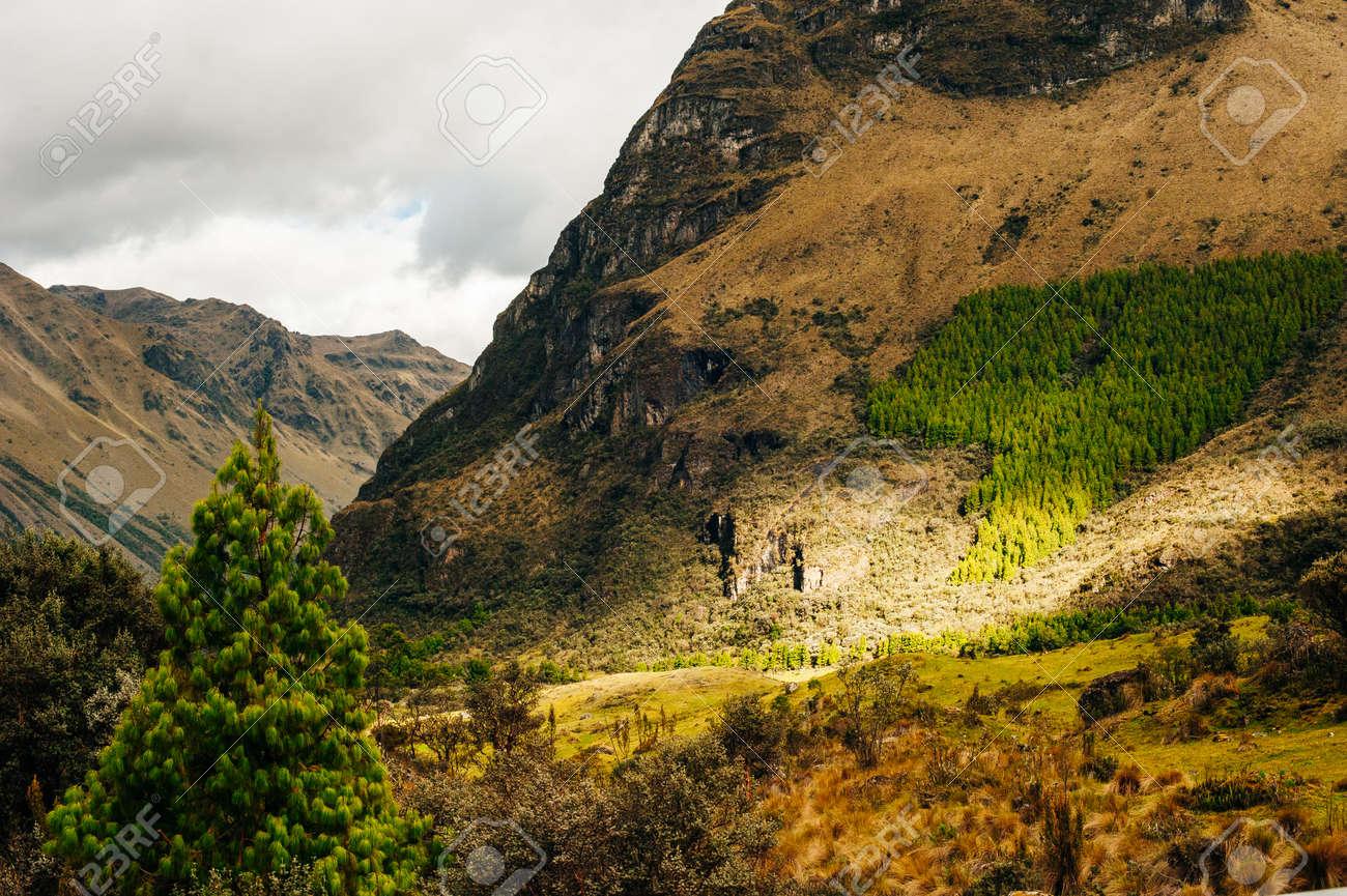 Mystical rock formations of Cumbemayo in Cajamarca PERU. - 169711623