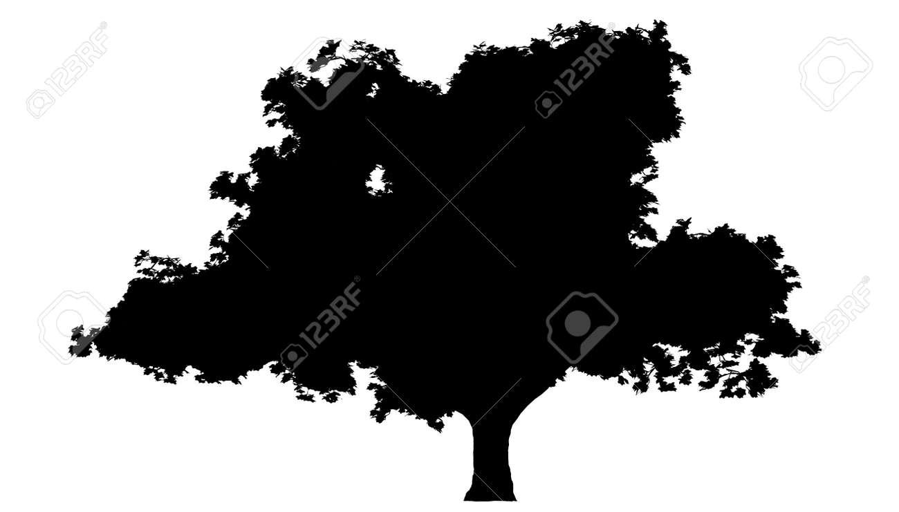 Tree Stock Vector - 7334280