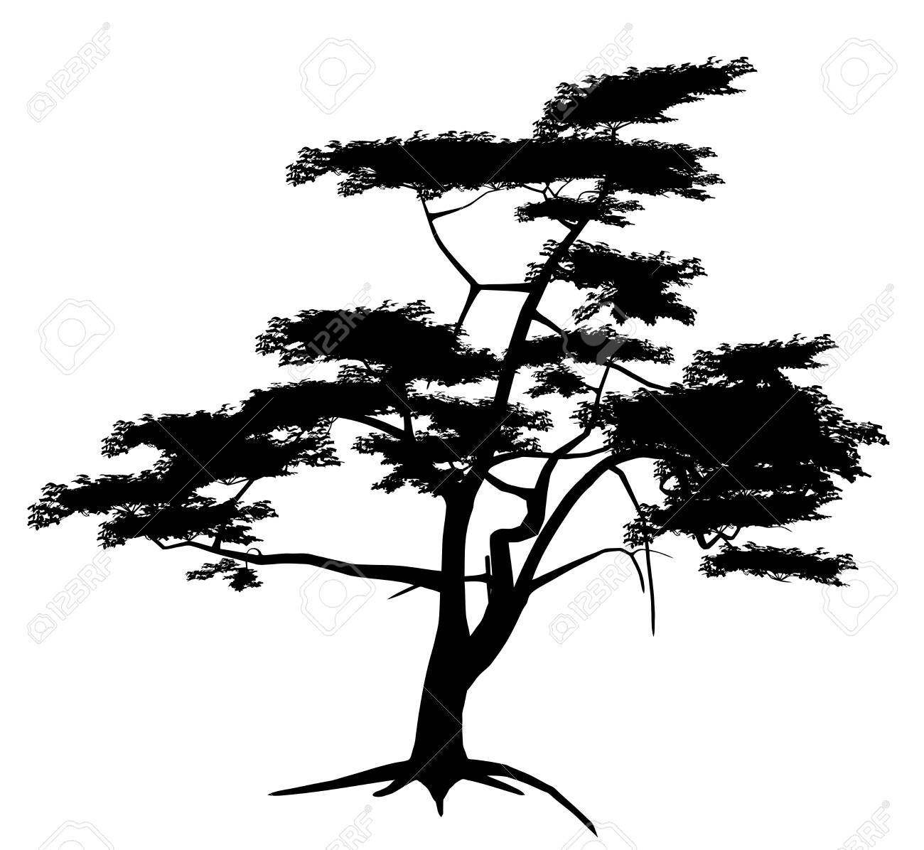 43 651 tree outline cliparts stock vector and royalty free tree