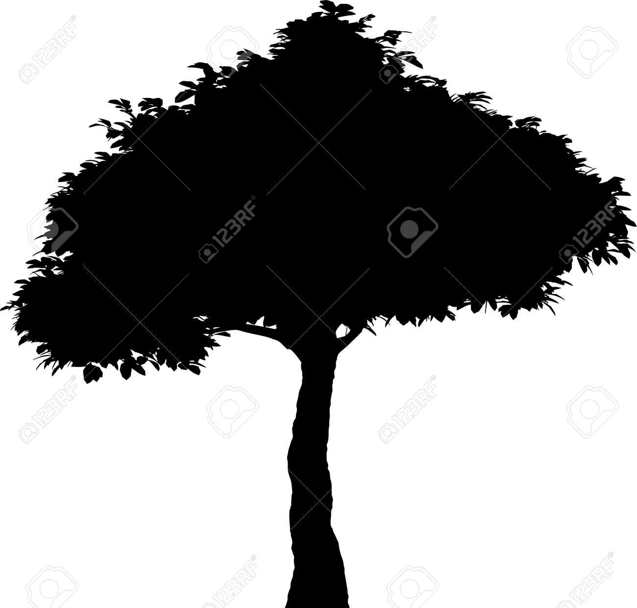 Tree Stock Vector - 7334225