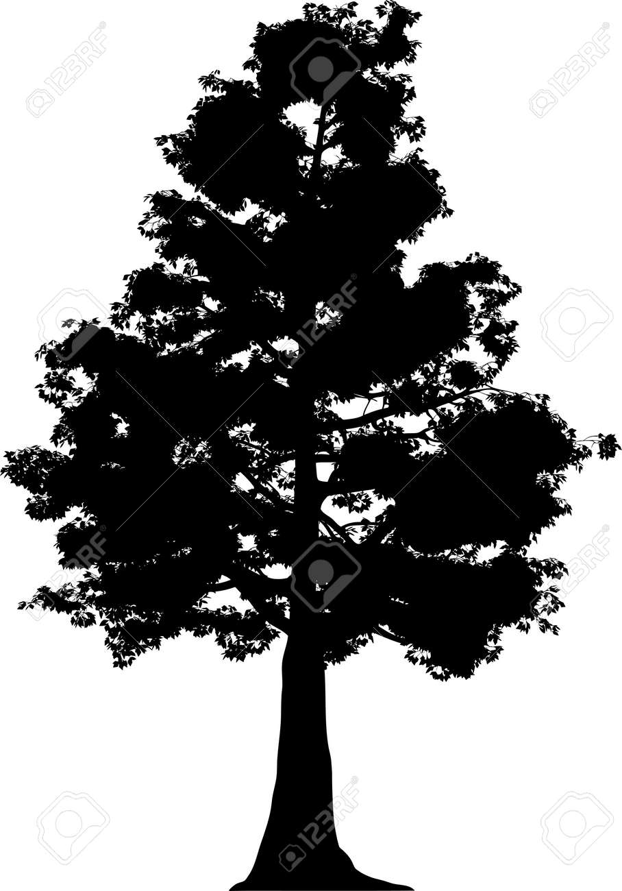 Tree Stock Vector - 7334366